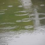 「雨模様」の本来の意味と読み方は? ~走り梅雨、梅雨雲、送り梅雨という言葉の意味と
